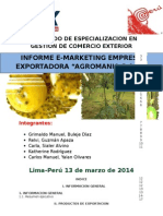 TRABAJO FINAL DE E-MARKETING2.docx