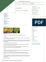 Deficiencia de Nitrógeno, Fósforo y Potasio