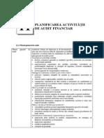 Capitolul 11 Planificarea Activitatii de Audit Financi Ar
