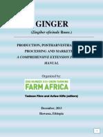 Ginger (Zingiber Oficinale Rosec.)
