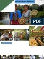 Experiencias de desarrollo productivo - Alto Amazonas