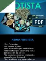 power biologia.pptx