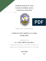 Informe Final Estudio Imp. Amb. Minera