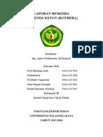 Laporan Biokimia Rothera Modul Ginjal 2015_Kelompok 3