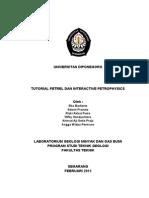 Tutorial Petrel Dan IP