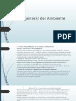 Ley General Del Ambiente 1