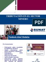 Tributacion Ing. Tany Gallardo Quiroz