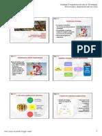 3 Implantacion de Estrategia Estructuras Alumnos