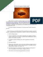 106 Formas de Aumentar Tu Poder Mental