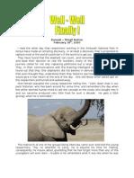 Elephants are pretty smart
