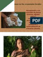 Mujeres indígenas en las economías locales