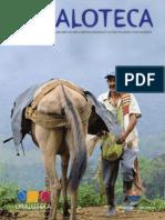 revista-oraloteca-junio-2-2.pdf