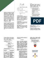 139731039-Triptico-Seguridad-Industrial.doc