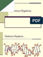 Química Orgánica1