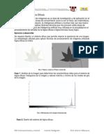 Asignación FUZZY.pdf