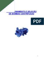 Dimensionamento e Seleção de Bombas Centrífugas