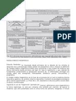 Menendez Modelo Medico Hegemónico y Atención Primaria