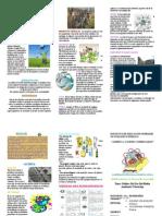 Politica de Uso Del Medio Ambiente y Reciclaje