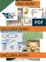 VACUNA AHN1