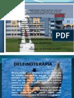 DELFINOTERAPIA DIAPOSITIVAS