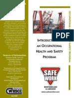 Introduction Ohs Program