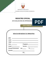 registro_oficial_ini inter.doc