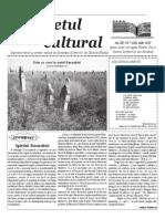 Răsunetul cultural iulie 2015