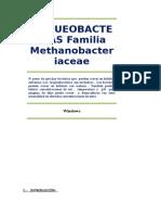 ARQUEOBACTERIAS Familia Methanobacteriaceae.docx
