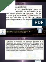 MANEJO Y DISPOSICION DE RESIDUOS SÓLIDOS.ppt