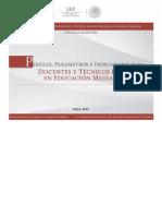 Perfiles Parametros e Indicadores en Desempec3b1o Docente Ems