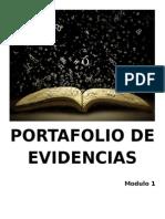 SNFV_Portafolio