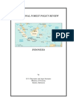 national forest policy review-indonesia