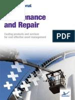 Paint Repair Maintenance