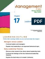 Management Robbins PPT17