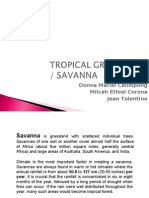 Bio Savanna