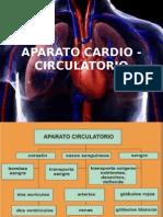 Sistema Cardio Circulatorio