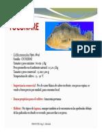 peces-amazonicos-ii-2012-i-modo-de-compatibilidad.pdf