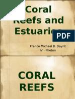 Coral Reefs and Estuaries 2