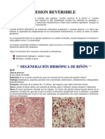 Manual de Patologia Clinica a Color Laboratorio