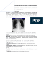 Trabajo Radiologia