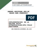 PLAN DE  IMPLEMENTACION DE  LA IPV  EN LA RED DE  SALUD SAN FRANCISCO.docx