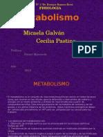 tp metabolismo.pptx