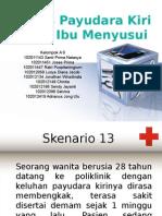 Ppt Pleno 24 Sken 13