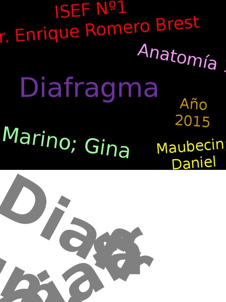 TP3 - Diafragma - Anatomia.ppsx