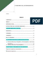 Estructura y Funciones Del Sistema Nervioso - Copia