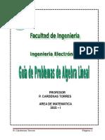 Guia Algebra Lineal 2015 i