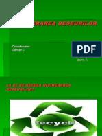INCINERAREA DESEURILOR