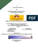 Winter project finance