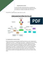 Organización Escolar.docx