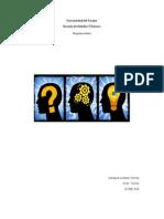 Organizador Grafico Copy